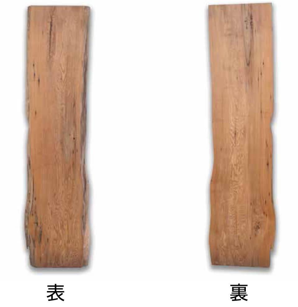 屋久杉 No.1